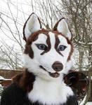 Sold! Husky fursuit