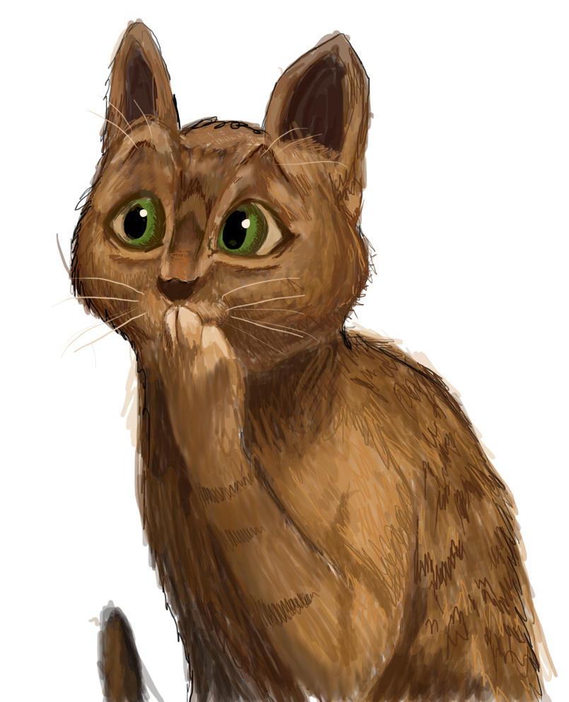Ooooooh cat WIP by schnuffitrunks
