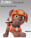 Paw Patrol Pup Zuma