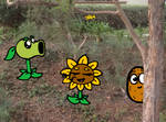 Plant vs zombies in real life by IllaNahue3800