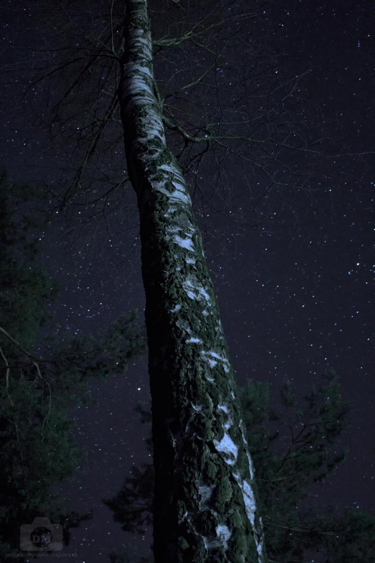 Stars by LastOfThePlagues
