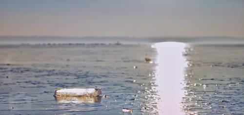 Ice#2 by LastOfThePlagues