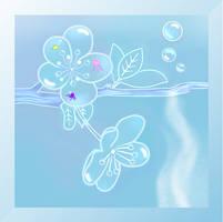 Aqua Sakura - Cherry Blossom