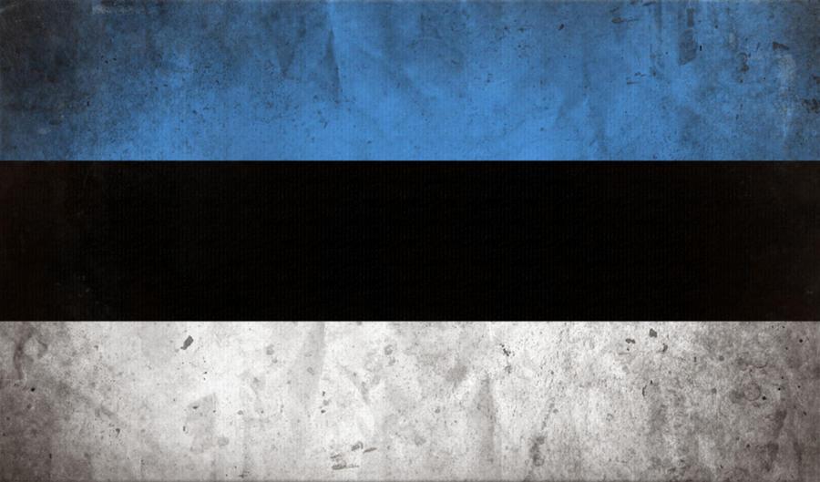 Estonia flag by Fallof on DeviantArt