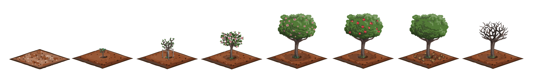 apple tree growth stages by eatmemtfckr