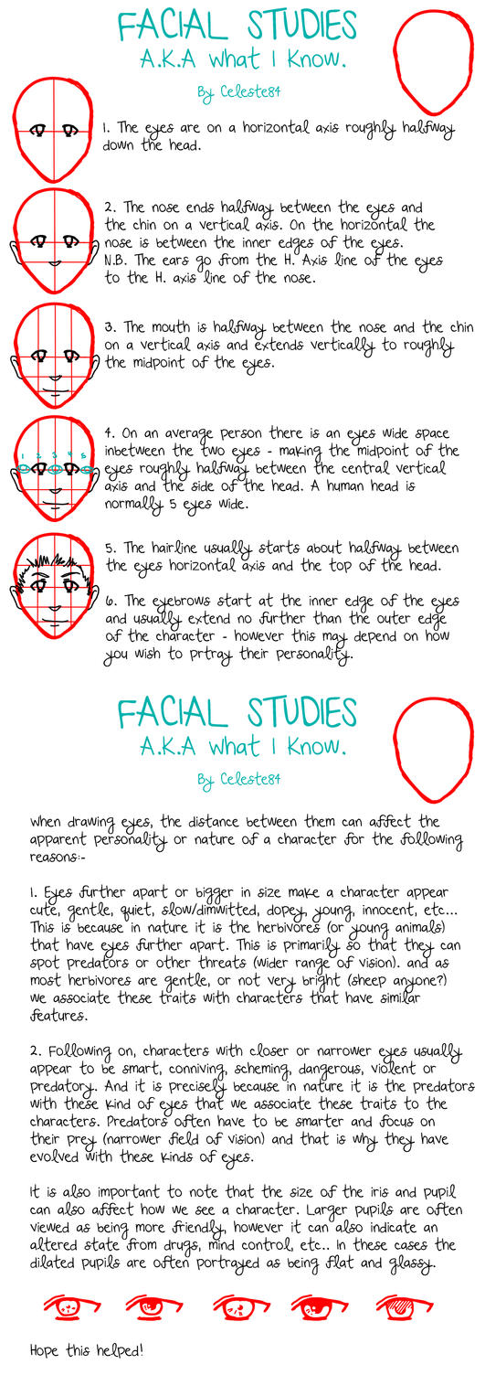 Facial studies tutorial by celeste84