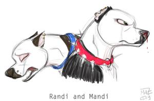 Randi and Mandi by Coloran