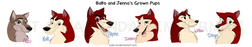 The Gallery For Balto Jenna Puppies