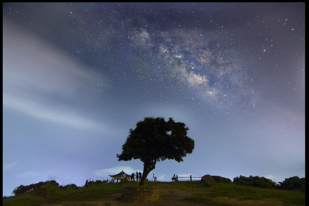 Tree and milky way by johnchan