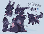 Callahan - comm