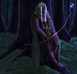 Forest Hunter (COMM)