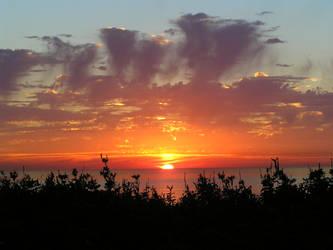 Sunset CA by anjelbritt