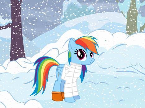Rainbow Dash in the Snow