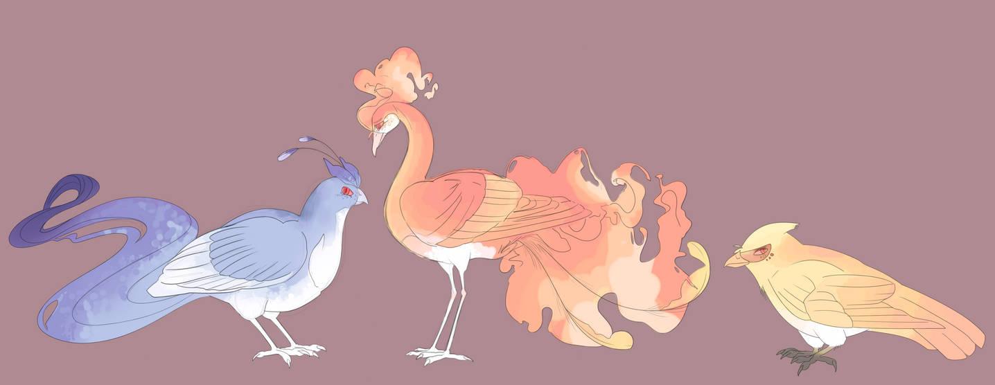 Legendary Birds Reference By Amatelaseu On Deviantart