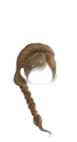 Hand Painted Braided hair with bangs