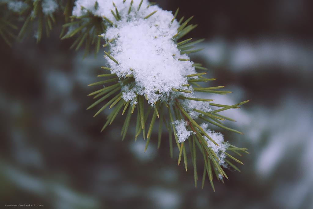 Winter III by Kva-Kva
