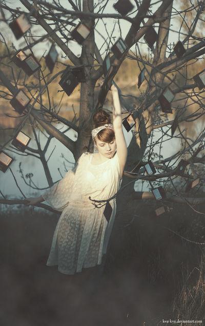 15/52 Tree of Memories by Kva-Kva