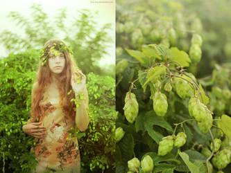 Botany series - Green - Humulus lupulus by Kva-Kva