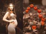 Botany series - Orange - Physalis alkekengi