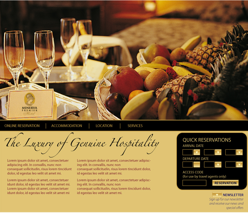website proposal for hotel by tiska