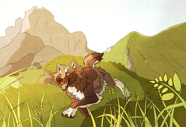 Mountain Run by StormWhiskers