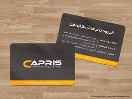 Capris Advertising Group by Elahi