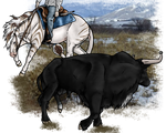 Yuki Training - Bull Fighting