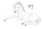 Foal Ref - KinkyUnicornSpit