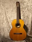 Acoustic Guitar 01