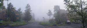 Foggy Panorama
