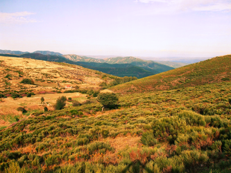 An landscape in Ardeche, at Sunset