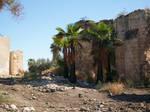 Ruins 14