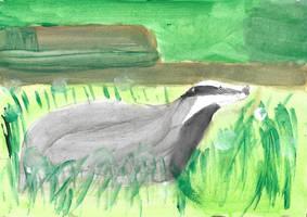 30 - Badger / Blaireau