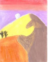 18 - Night at the desert / Nuit au desert