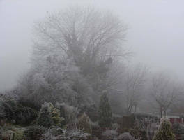 Freezing fog by Helens-Serendipity