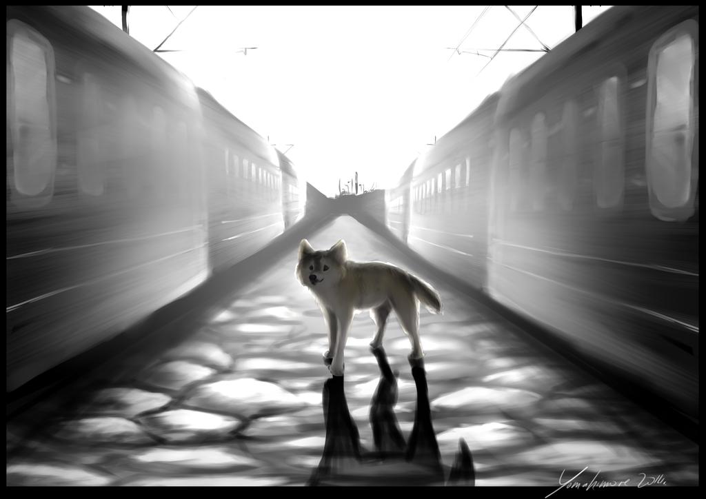 The Way by Yomahimore