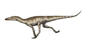 Lewisuchus - the croc-near-dinosaur