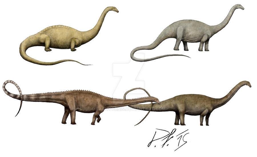 diplodocus_over_the_centuries_by_pachyornis-d8jbru1.jpg