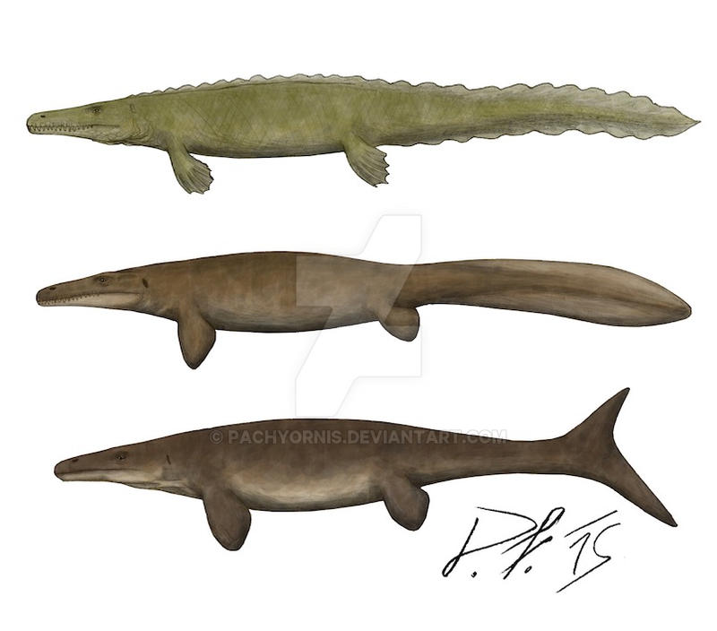 mosasaurs__now_and_then_by_pachyornis-d96fcch.jpg