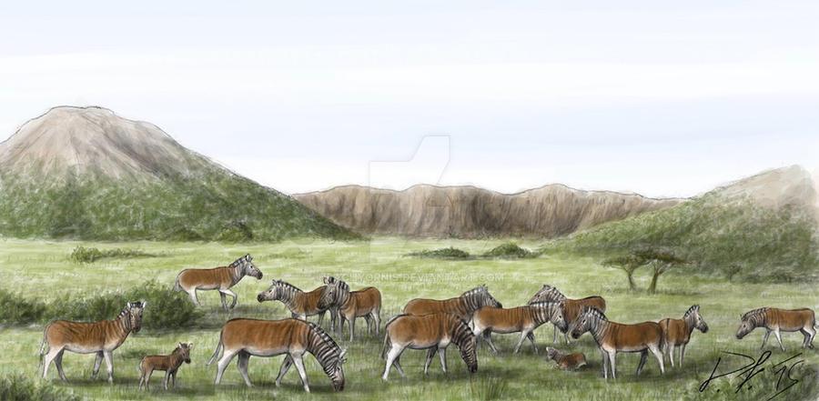 Quagga herd by Pachyornis