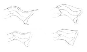 Theropod necks: S-shaped or horse neck?