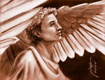 Earning His Wings