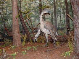 Museum Dinosaur 01