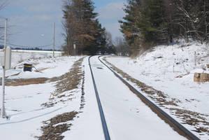 Snowy Tracks 01