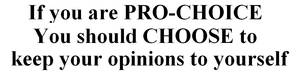 Pro Choice Bumper Sticker