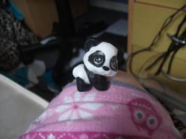 A panda on my knee?!?!