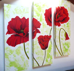 Coquelicots Triptyque by miemaugis