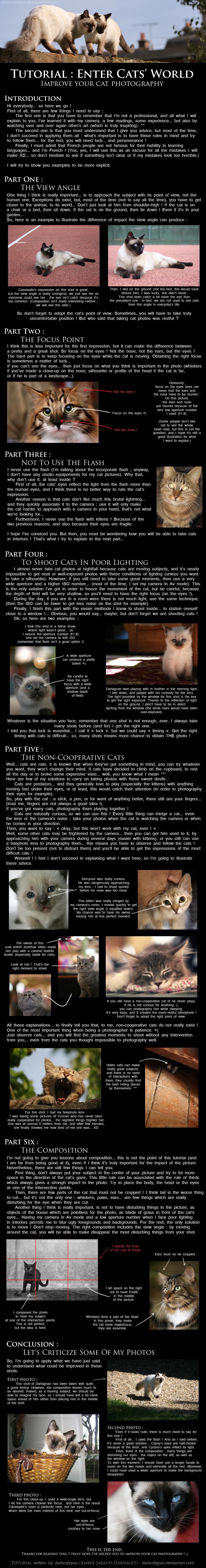 Tutorial : Enter Cats' World by darkcalypso