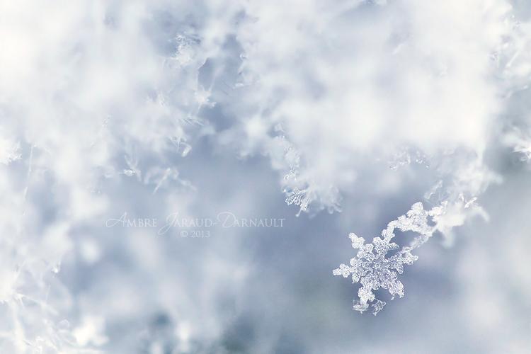 Wintery by darkcalypso