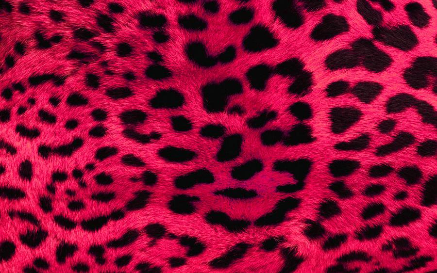 Pink Leopard Print Wallpaper by angeldust on DeviantArt